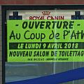 Au coup de p'ath ath belgique toilettage