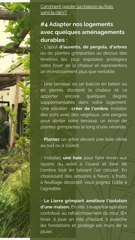 Comment garder sa maison au frais : planter et végétaliser
