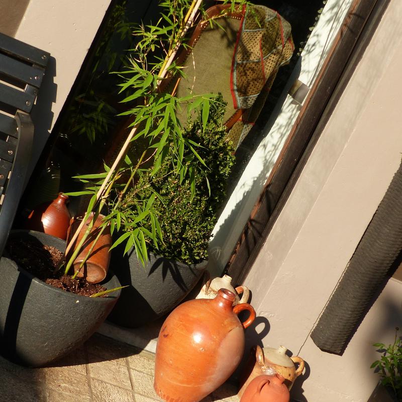 aaaa jardin le 11 juillet1