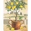 Un délicieux classique : le lemon curd