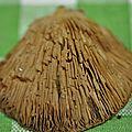 Crepidotus mollis (2)