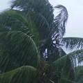 Tempête tropicale sur mayotte....