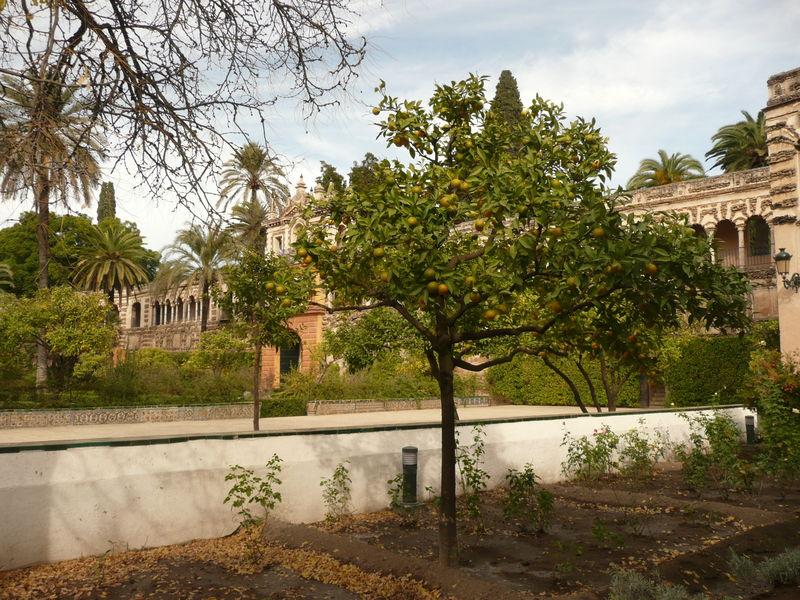 Séville, l'Alcazar