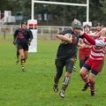23IMG_0282T
