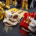 Nouvel An Chinois_France (3)