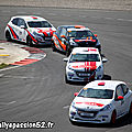 2013 : RPS Val de Vienne - 208 Racing CUP + Proto Spider CUP