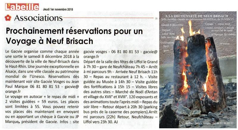 11) article du 1er novembre 2018 - voyage à Neuf Brisach