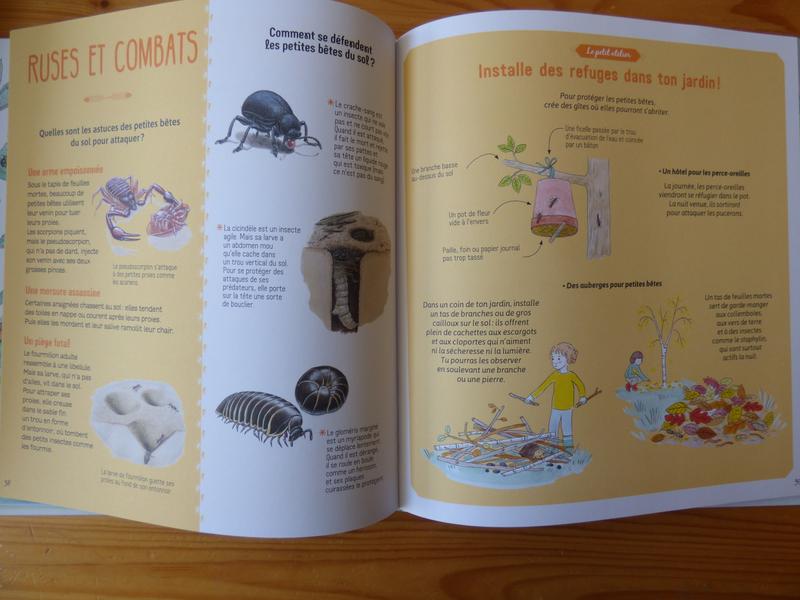 Le livre aux petites bêtes (3)