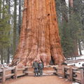 43 - National Parks de Californie