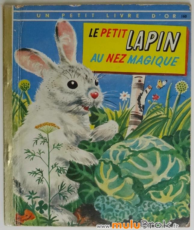 LE-PETIT-LAPIN-AU-NEZ-MAGIQUE-1-muluBrok-Livre-ancien