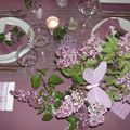 table lilas 045