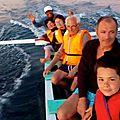 Expédition dauphin à Lovina - Bali