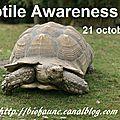 Aujourd'hui, lundi 21 octobre, journée des reptiles !