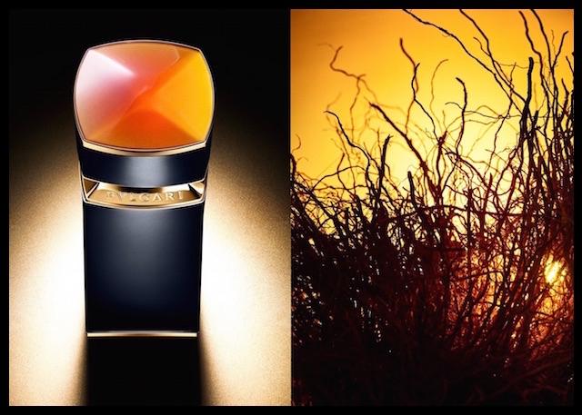 bulgari le gemme ambero