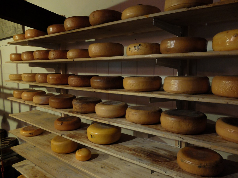 fromagerie REMBRANDT HOEVE (Attraction pour touristes)