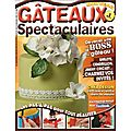 Gâteaux spectaculaires n°1