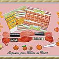 Échange Orange 2019 Chez Manou (Carte scrapée 10x15cm) Isaphanie pour Marie de Clessé 2