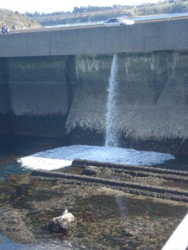 Rejet du barrage