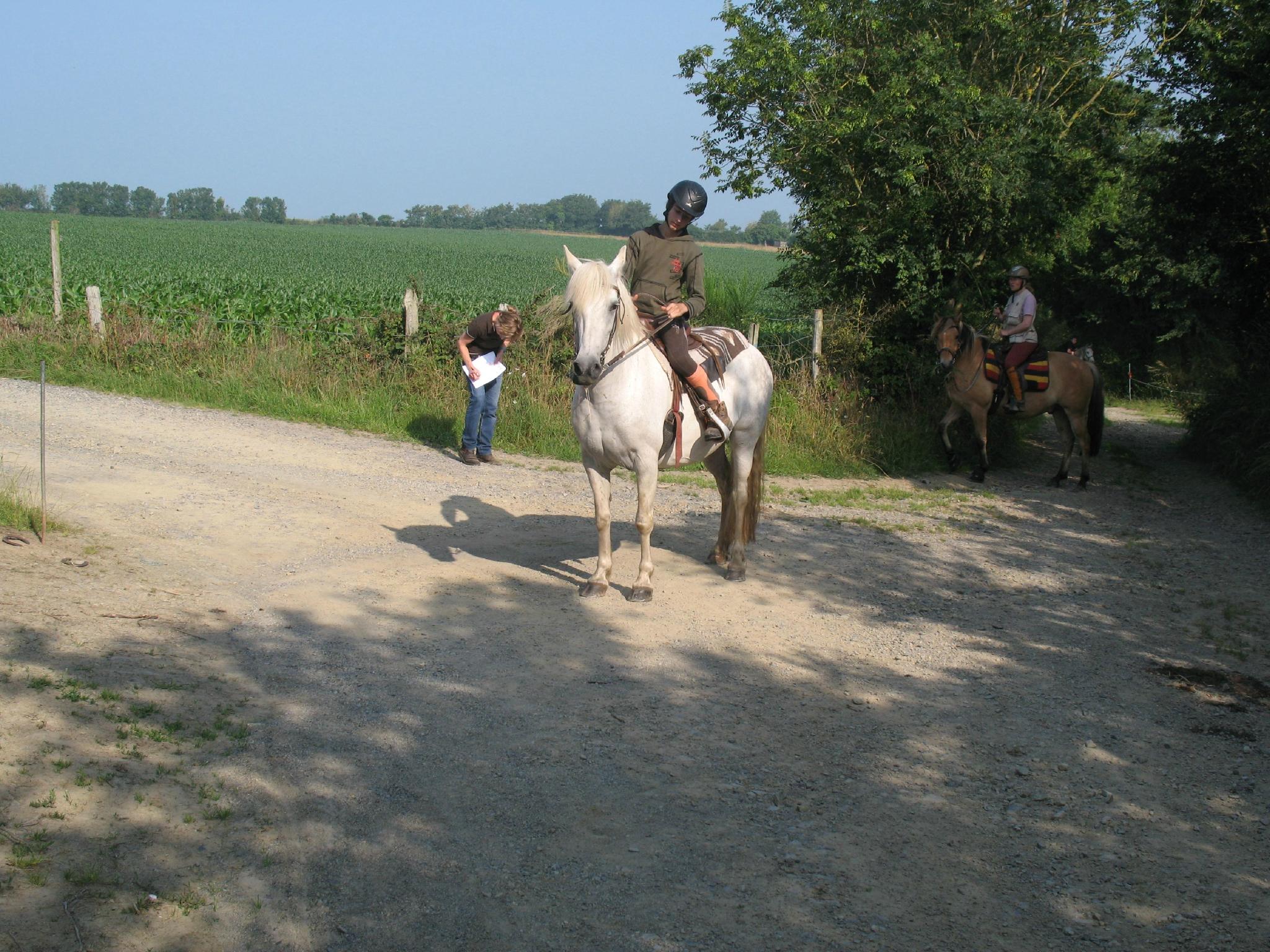 jeu du fer à cheval (12)