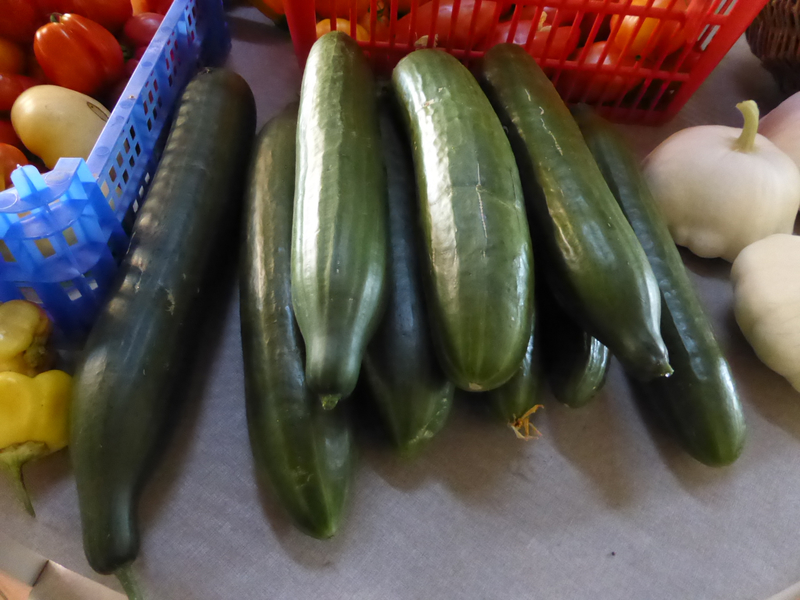 23-tomates, concombres, courgettes, haricots, pâtissons (7)
