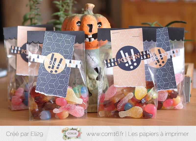 eli29_com16_sachets_bonbons_halloween