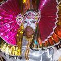 Sorties : Carnaval
