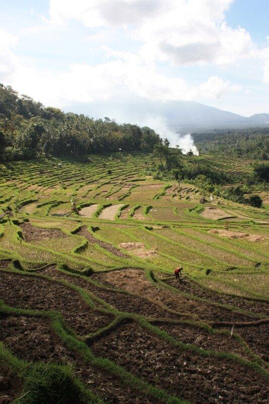 Dans l'est de Bali