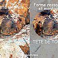 CR-1272 - tête de tortu - ressortie