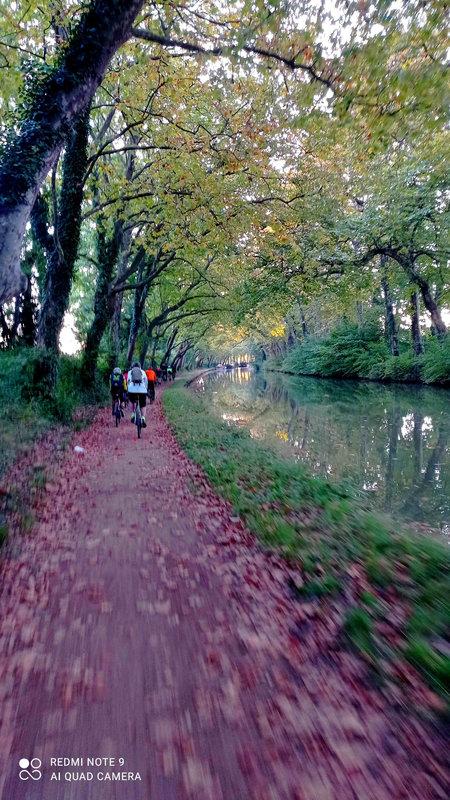 Gravel Avignonet-Lauragais 17-10-2021 (4)