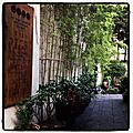Decouverte d'une maison de thes a cote de la maison, shanghai