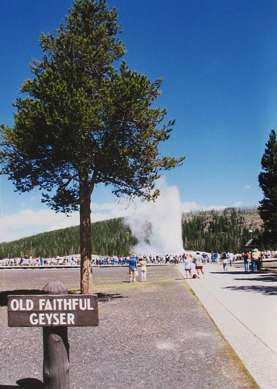 Old Faithful Geyser (Yellowstone Park)