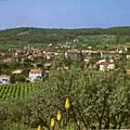 Trans en Provence-Vue générale 2