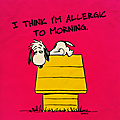 I think i'm allergic to morning.