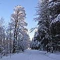 17/02/18 : la neige dans les vosges # 1