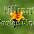 Bandeau_blog_H_Alpes2_copie