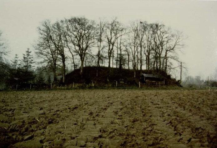 POMMERIT-LE-VICOMTE - Motte du Moulin 00