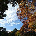 ciel d'automne1
