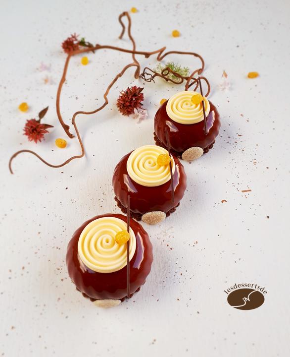 Truffe chocolat rhum raisins 2