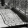 tapis dans l'ombre