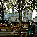 Bouquiniste sur le quai des Célestins.