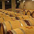 Le hameau duboeuf : une découverte de la vigne et du vin pour toute la famille (soâne-et-loire, bourgogne)