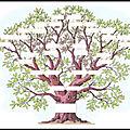 genealogie arbre