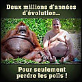 Humour - l'évolution de l'homme...