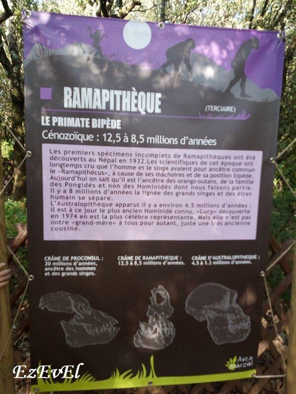 zoo prehistorique_marzal 7 EzEvEl