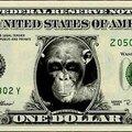 Monnaie de singe ...
