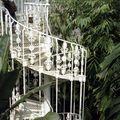 Kew garden 6