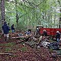 Nettoyage en forêt du Bager