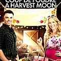 Coup de foudre à harvest moon