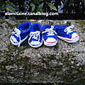 Baskets bleues