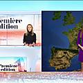 virgiliahess00.2020_05_04_meteolejournalpremiereeditionBFMTV